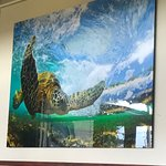 Haleiwa Joe's Foto