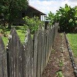 Foto di Laura: A Creole Plantation