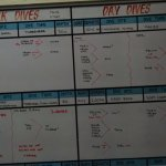 schedule for a typical diving day
