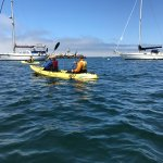 Foto di Monterey Bay Kayaks