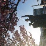 Photo of Omiyanomatsu / Statue of Kanichi and Omiya