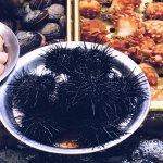 Jagalchi Market Foto