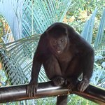 Photo of Iberostar Quetzal Playacar