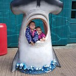 Photo de Devon's Crealy Great Adventure Park