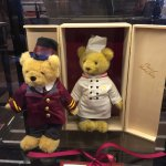 Sacher teddies everywhere