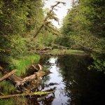 Foto de Walk the Wild Side Trail