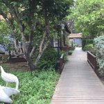 Golan Rooms At Sagi Family Country Lodging Foto