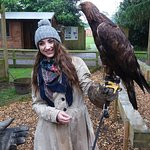 The Birds of Prey Centre is well worth a visit!