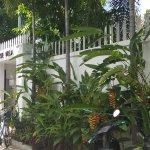 Anise villa boutique 400 street