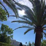 Photo de FERGUS Style Pollensa Park SPA