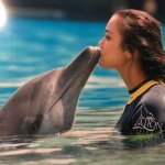Dolphin Abee and me