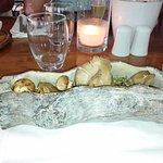 Log of luke warm mushrooms