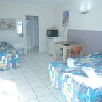 Clean room,pet friendly, foxtel , free wifi  weekly deal cheaper , perfect location close to eve