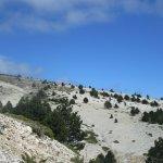 Paysage quasi lunaire au Mt Ventoux