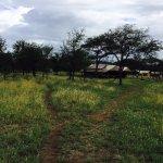 Photo of Ndutu Kati Kati - South Serengeti Safari Camp