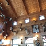 Front lobby adds feeling of wildlife on a trail with covered wagon ad breakfast stop.