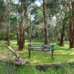 Photo of Kokoda Trail Memorial Walk