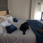 Photo of Hotel Codina