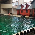 Photo of All Weather Zoo (Allwetterzoo Muenster)