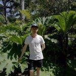 Photo of San Francisco Botanical Garden