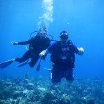 Foto di Roatan Divers