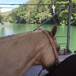 Caramel and the mopan river, while we crossed on the hand crank ferry.