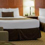 3 Queen Beds