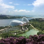 View from our room to Gardens by the Bay Arbortoreum