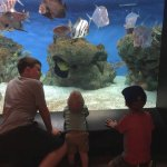 Our grands loved the Aquarium exhibit!