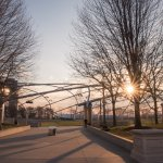 Foto di Millennium Park