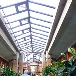 Wright's Darwin Martin House - Conservatory