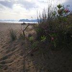 Iztuzu Beach Foto