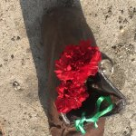 Flowers in iron shoes on the Danube