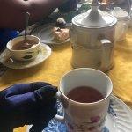 Dr. Bombay's Underwater Tea Party Foto