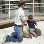 This was a real alligator.....was my boy ever excited !