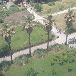 Photo of Arboretum Botanical Garden (Dendrarium)