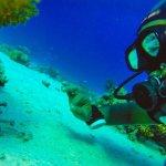 Foto di Blue Paradise Diving Center