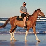 Foto de Horses On The Beach: Corpus Christi