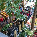 Photo de Marché des travailleurs (Marcado dos Lavradores)