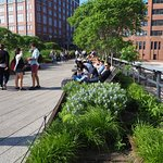 The High Line gets crowded on a sunny day.