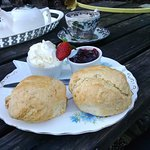 Best scones ever! Served warm and tasting buttery