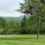 Foto de Mountain Meadows Bed & Breakfast