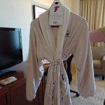 Robe in room