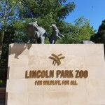 The Lincoln Park Zoo is always fun!