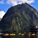 Doubtful Sound Kayaking with Real Journeys