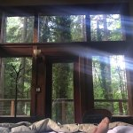 View from my bed in the tree house room