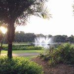 Photo of Jardim Botanico Plantarum