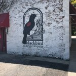Blackbird Baking Company