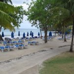 Beach area with plenty of chairs & Shade