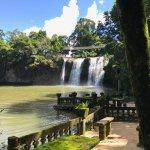 Mena Falls from Paronella Park